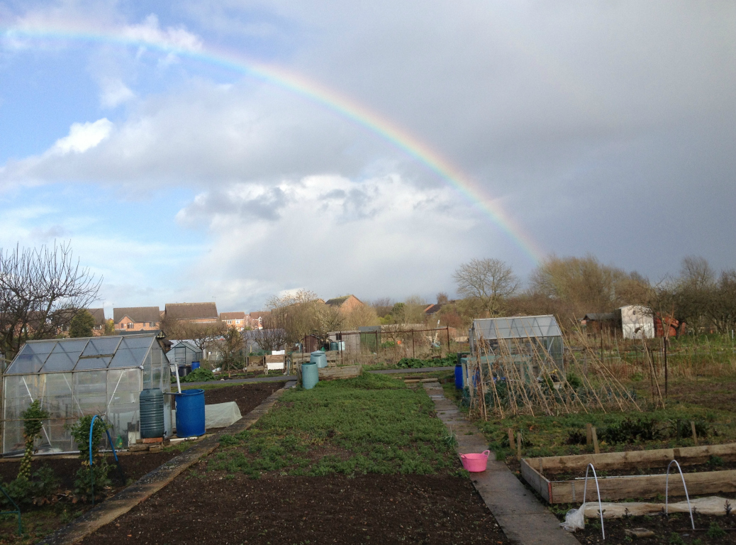 allotment rainbow