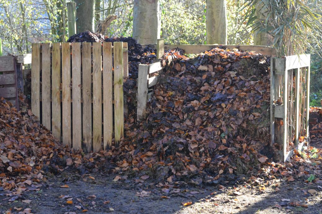 leaf mould compost bay