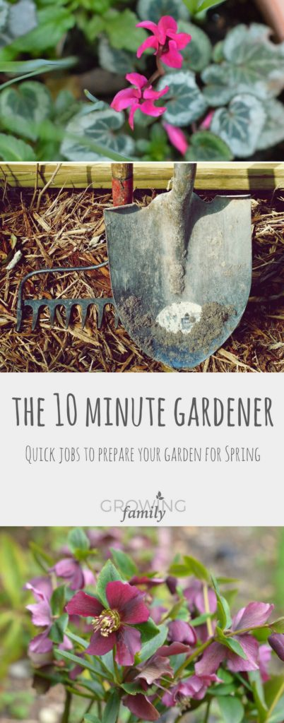 Only got 10 minutes to spare for gardening? You need the 10 minute gardener! Check out these quick gardening jobs that you can tackle in late winter to help prepare your garden for spring.