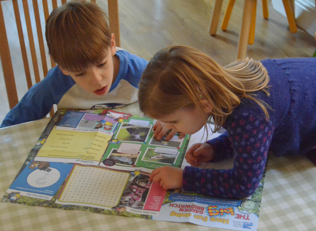 RSPB birdwatch activity sheet