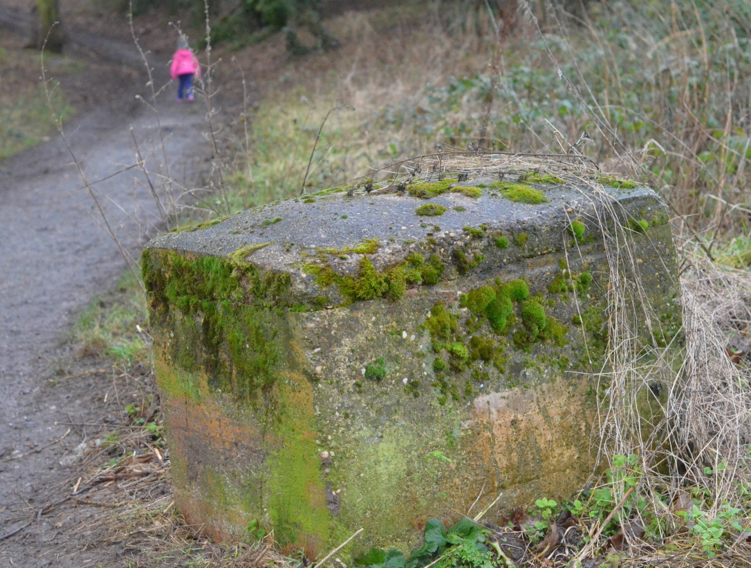 mossy stone chest