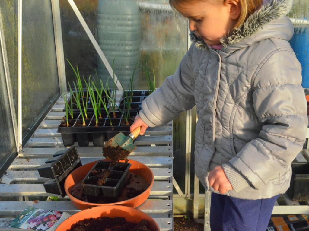 gardening with children in winter
