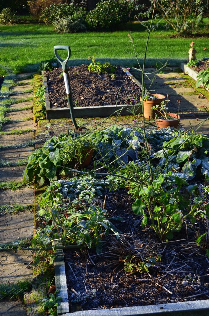 tidying garden