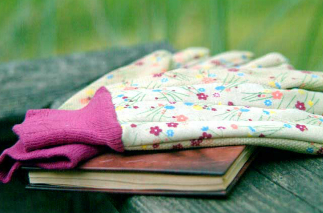 gardening book & gloves