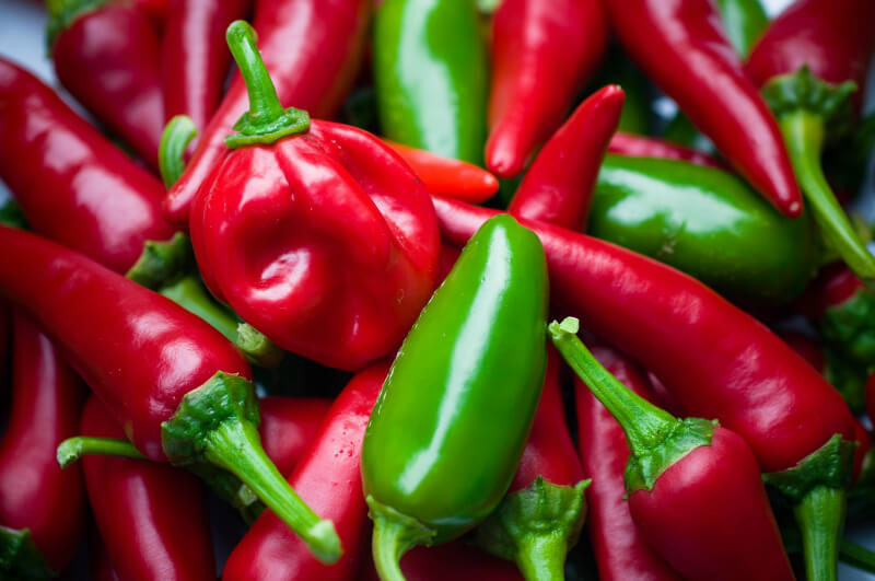 what to plant in february chillies