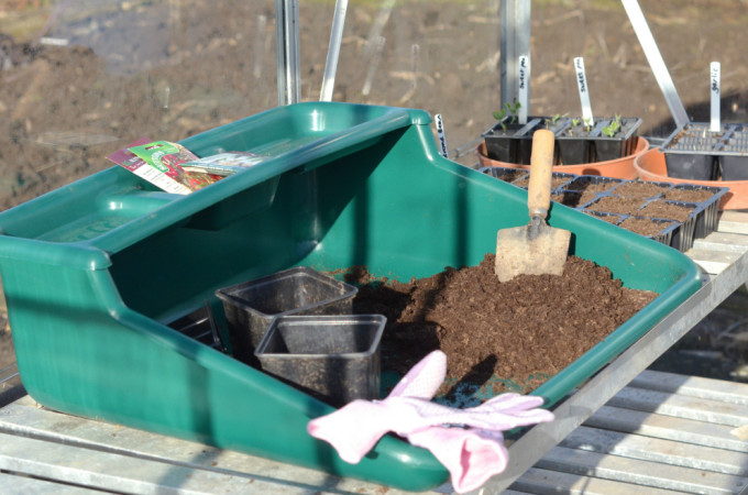 The planting begins…