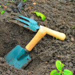 kids tools for planting seeds