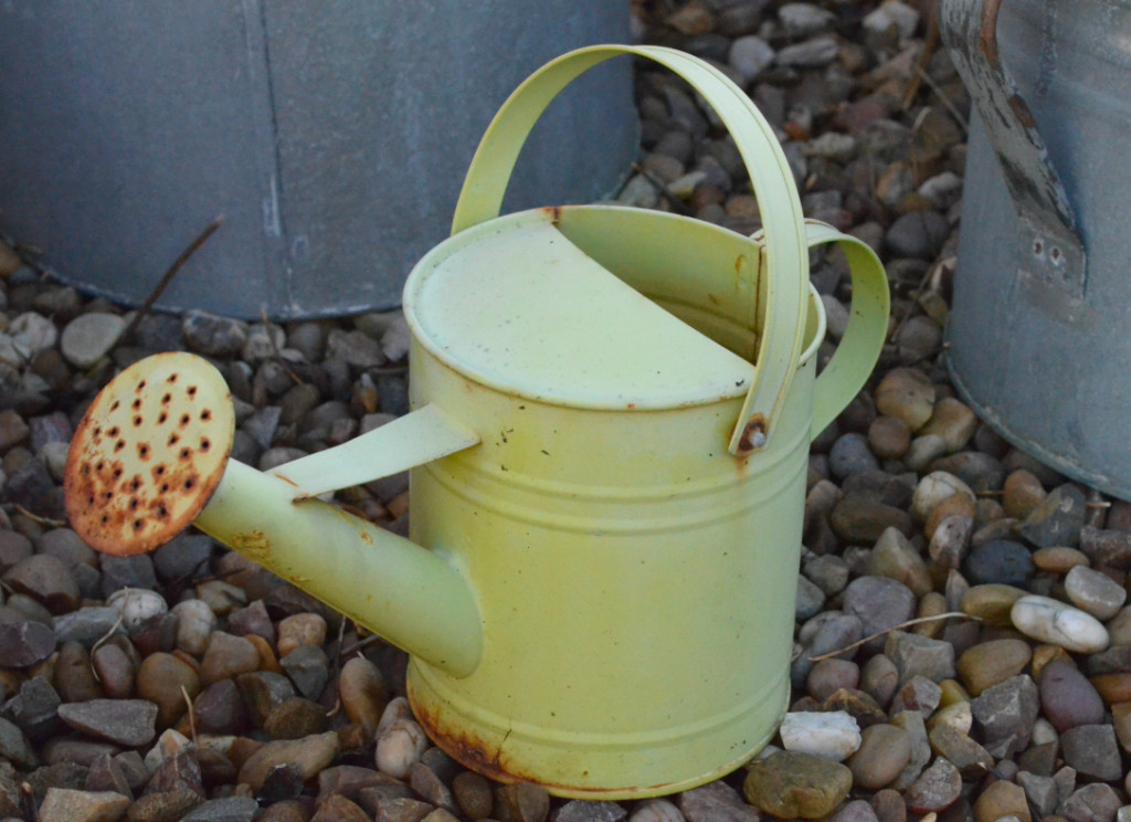 child size watering can