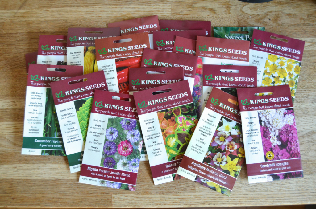 gardening in december- organising packets of seed