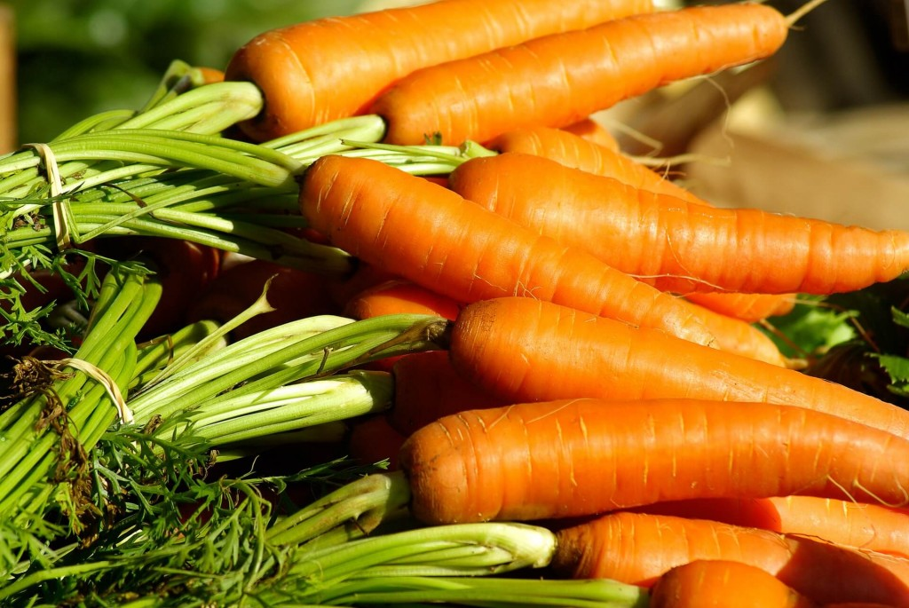 carrots are a great vegetable to sow in march