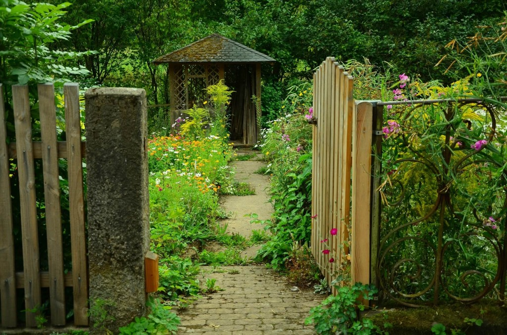 established garden with path