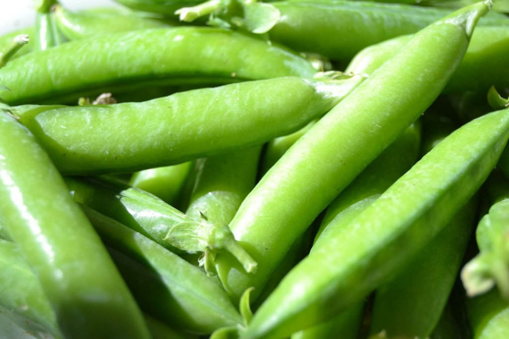 peas are a great vegetable to sow in march