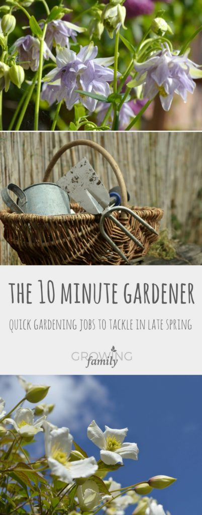 Only got ten minutes to squeeze your gardening jobs into? These quick gardening jobs to tackle in late Spring will help keep your garden looking great!