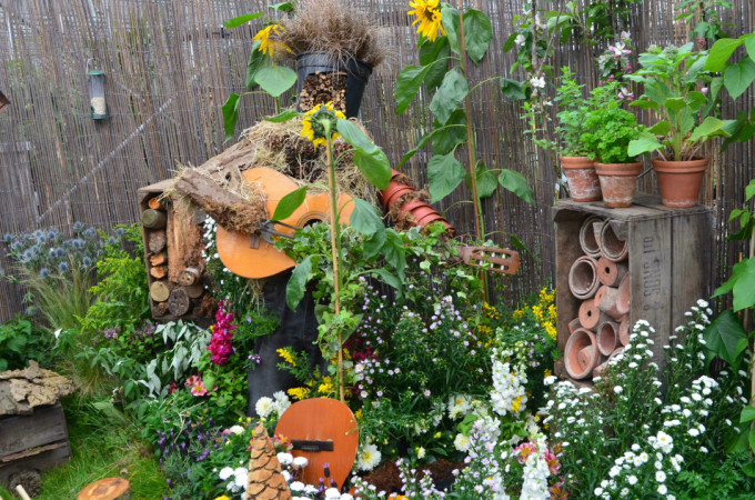 Make a Small Change for Nature: Nottingham in Bloom Open Day