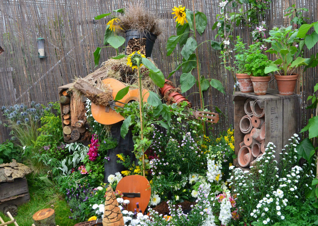 Wild Backyard Ideas : Make a Small Change for Nature Nottingham in Bloom Open Day  Growing