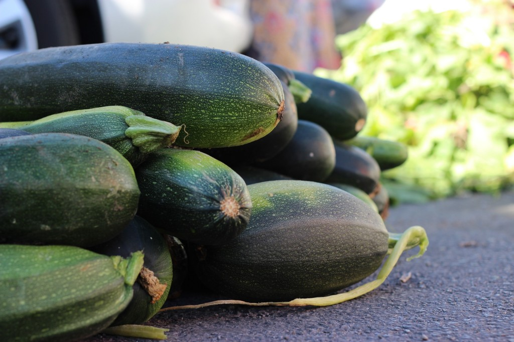 courgettes can be grown from seed from May onwards