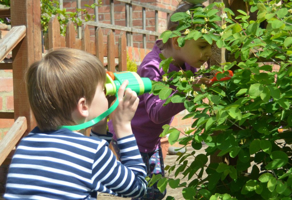 things to do in the garden when stuck at home with the kids - wildlife hunt