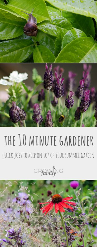 Only got 10 minutes to spare for gardening? Keep your garden looking great with these quick ten minute summer gardening jobs.