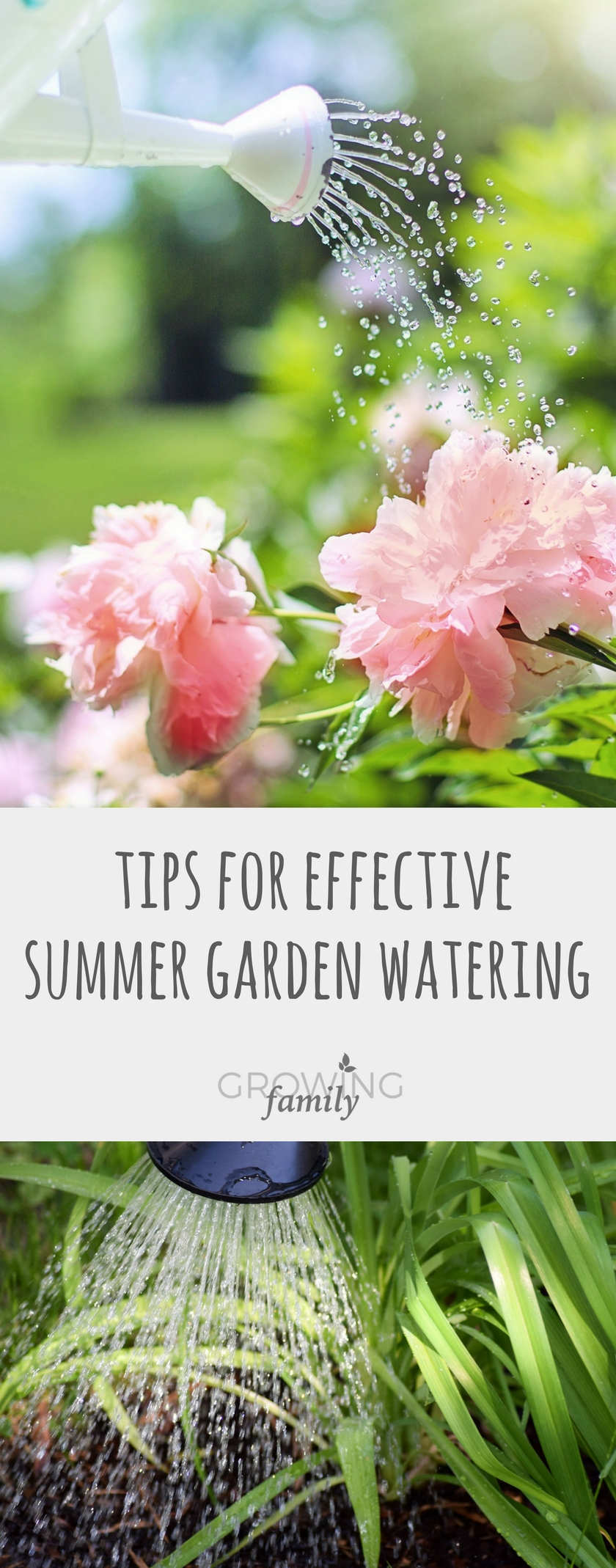 Tips for effective summer garden watering growing family - Summer time gardening tips ...