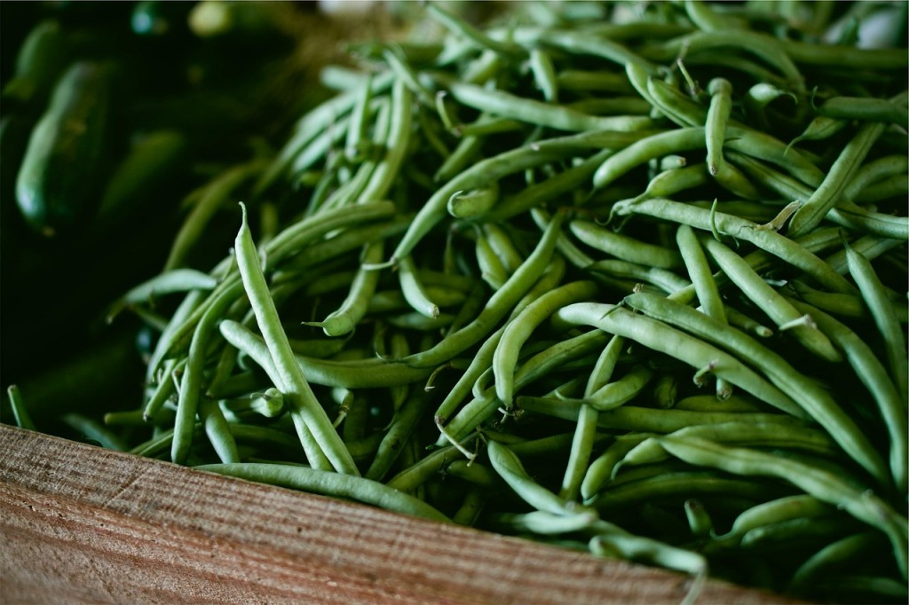 if you want to sow vegetable seeds in june french beans are a great option to plant now