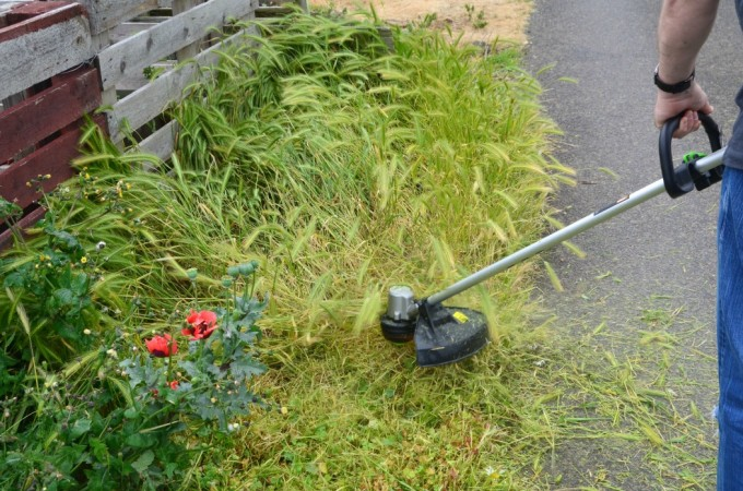 Review: Ego Power+ Cordless String Trimmer