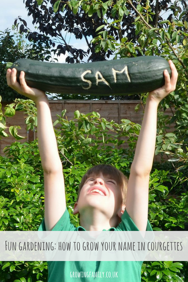 Looking for fun gardening ideas to do with the kids? Here's how to grow names in courgettes - a quick, easy and fun activity that's perfect for summer!