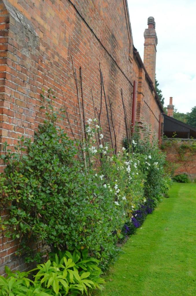 clumber park walled garden