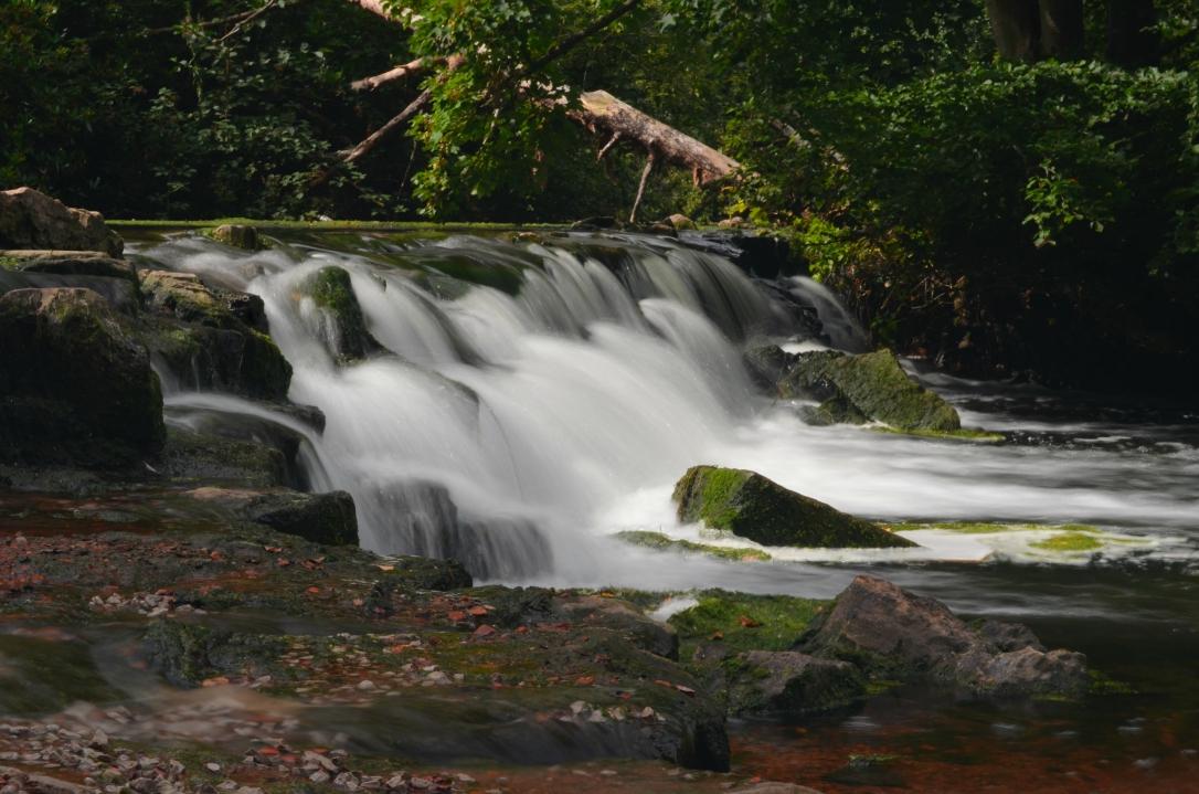 clumber park waterfall