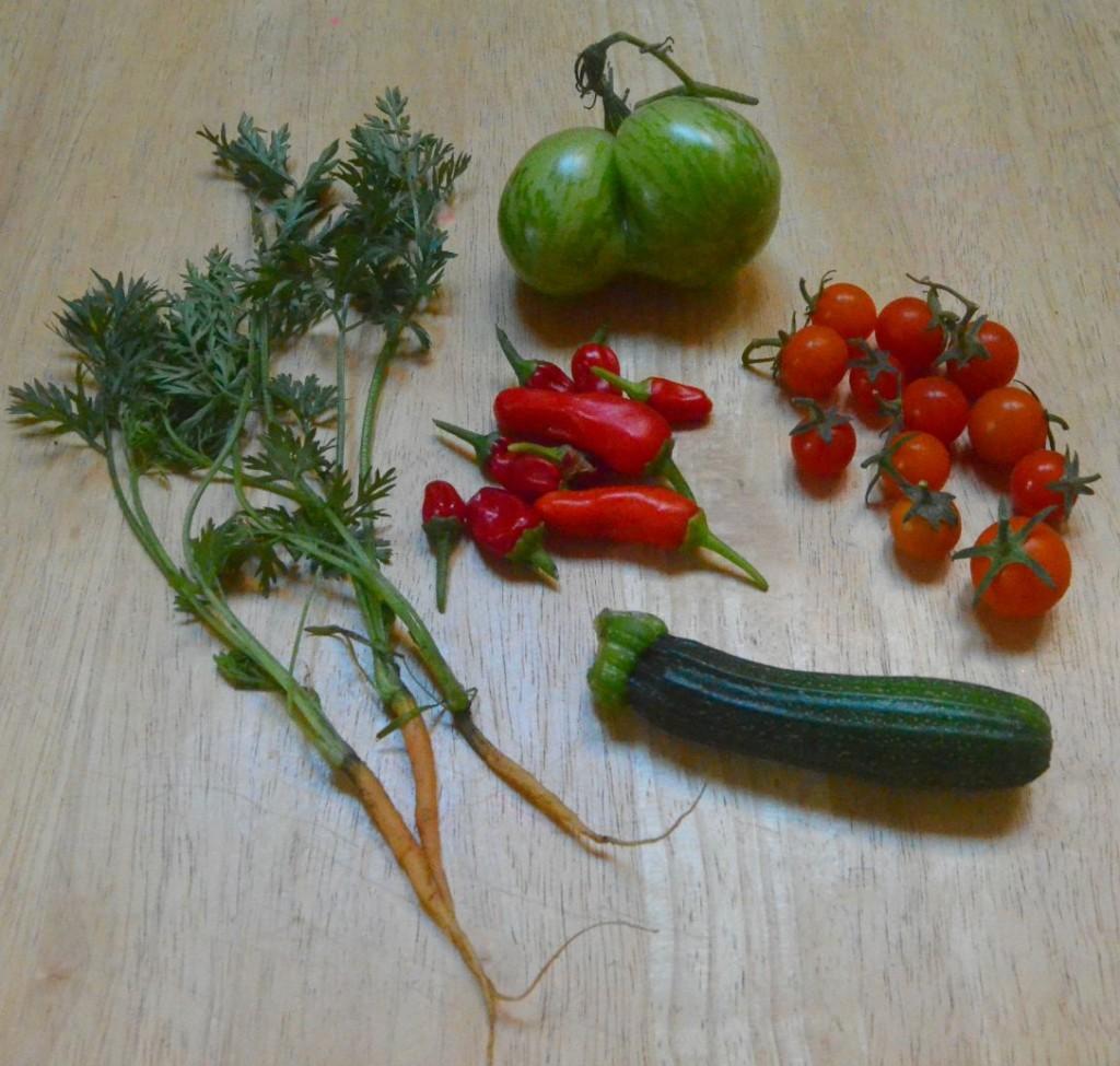 veggie animals craft