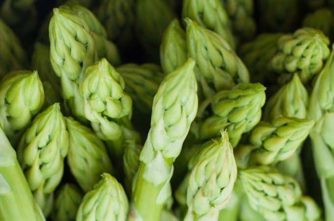 what to plant in october - asparagus