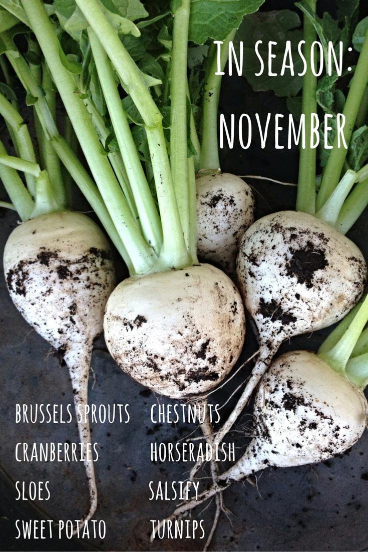 fruit vegetables in season november