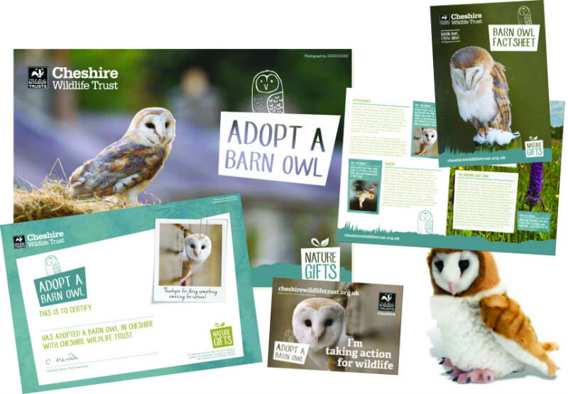 christmas gifts guide wildlife trust adoption pack