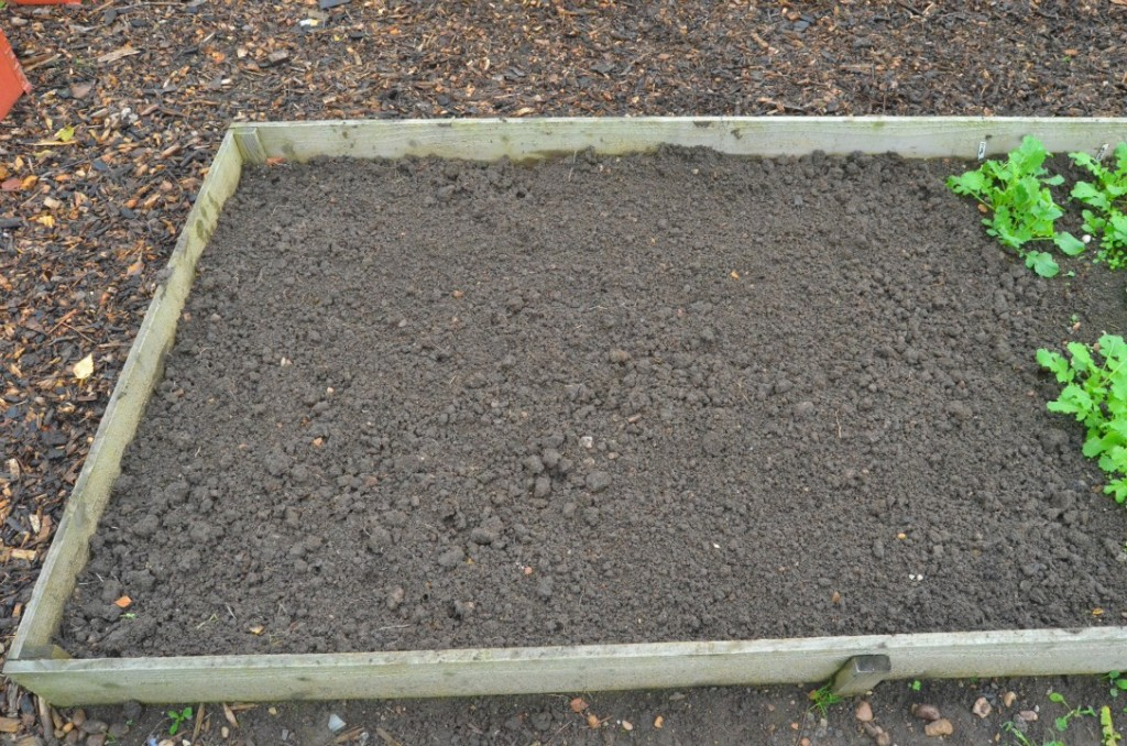 preparing the soil in a raised bed before planting