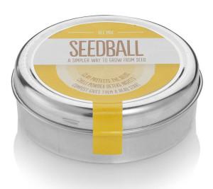 seedball bee mix seeds