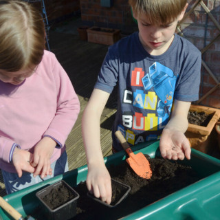 winter nature craft sowing winter salad seeds