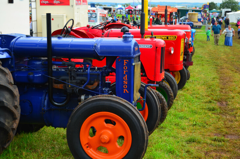 ideas for family days out - county show