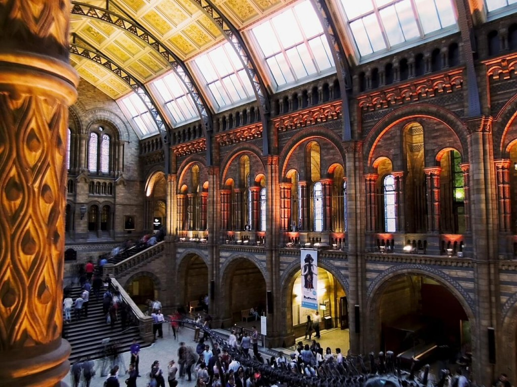 ideas for family days out - natural history museum