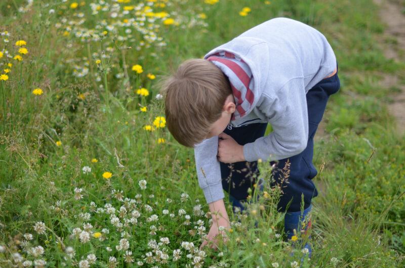 ideas for family days out - nature reserve