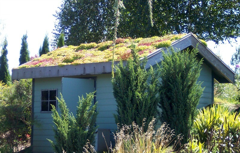 choosing the right shed for your garden - shed with green roof