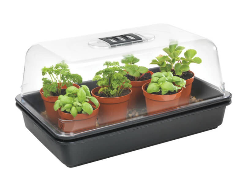 mother's day gift ideas heated propagator