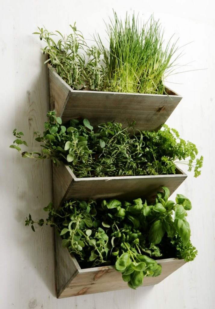 mother's day gift ideas wall herb planter