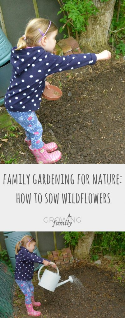 Give nature a home in your garden with this easy step-by-step guide to sowing wildflowers - perfect for a family nature activity.