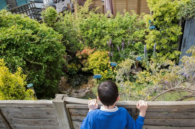 Giving nature a home in your garden with RSPB