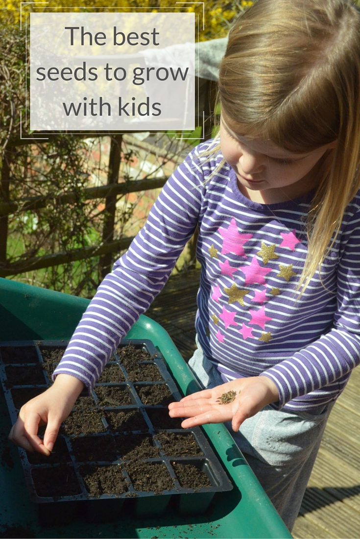 Top Seeds To Grow With Kids Growing Family