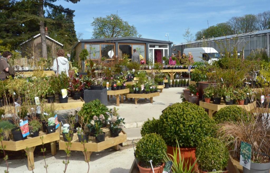 woodthorpe grange park plant shop