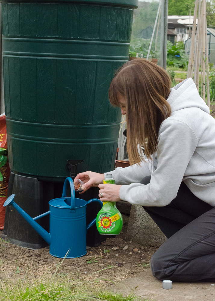 using baby bio outdoor for fruit and veg to improve plants' size, health and crops