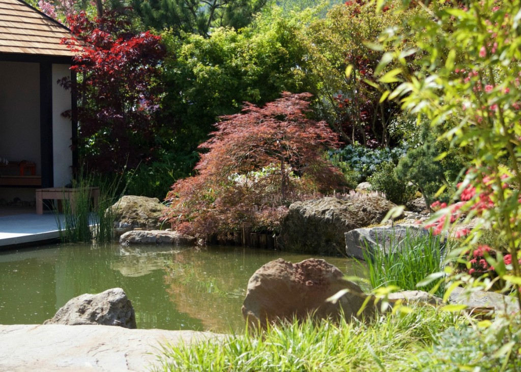 rhs malvern spring festival reflections of japan show garden