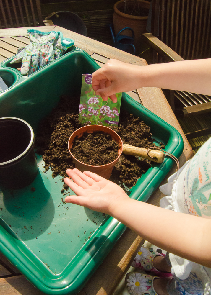 things to do in the garden when stuck at home with the kids - sowing seeds
