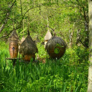 bewilderwood is a magical family day out in norfolk