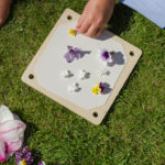 nature craft - flower pressing